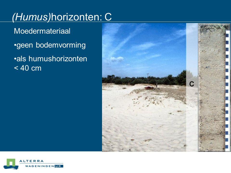 (Humus)horizonten: C Moedermateriaal geen bodemvorming als humushorizonten < 40 cm