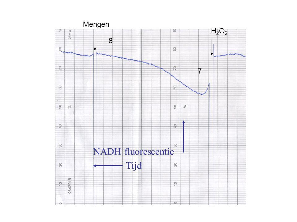 NADH fluorescentie Tijd H2O2H2O2 7 8 Mengen
