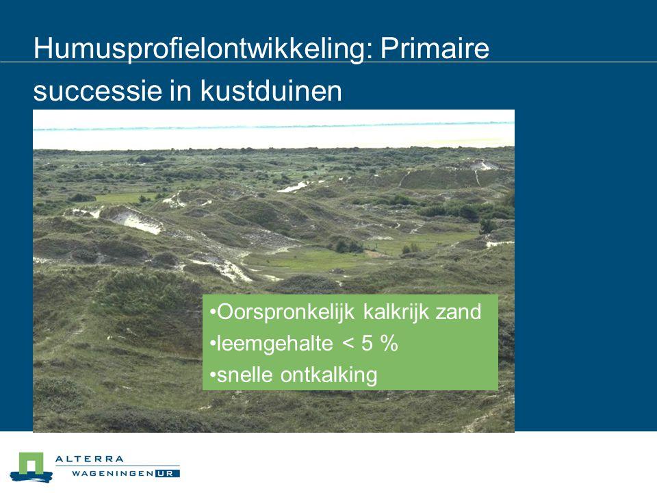 Humusprofielontwikkeling: Primaire successie in kustduinen Oorspronkelijk kalkrijk zand leemgehalte < 5 % snelle ontkalking