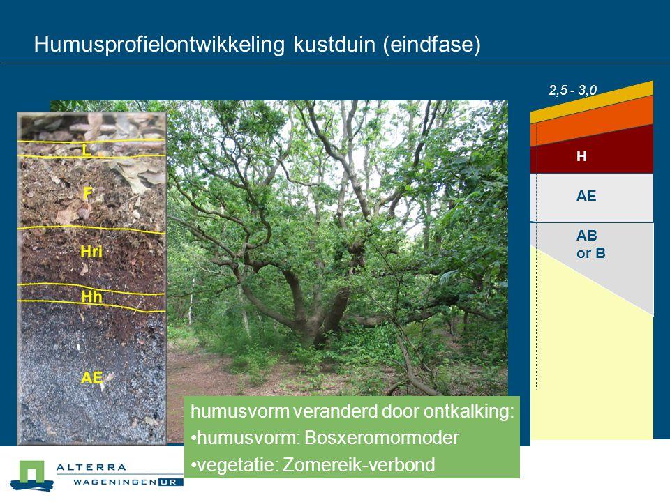 Humusprofielontwikkeling kustduin (eindfase) 20 cm 10 cm 0 cm 10 cm 40 cm 30 cm AE Ah/AC AB or B H F L decalcification (free CaCO3) 4,5 - 6,53,5 - 4,5