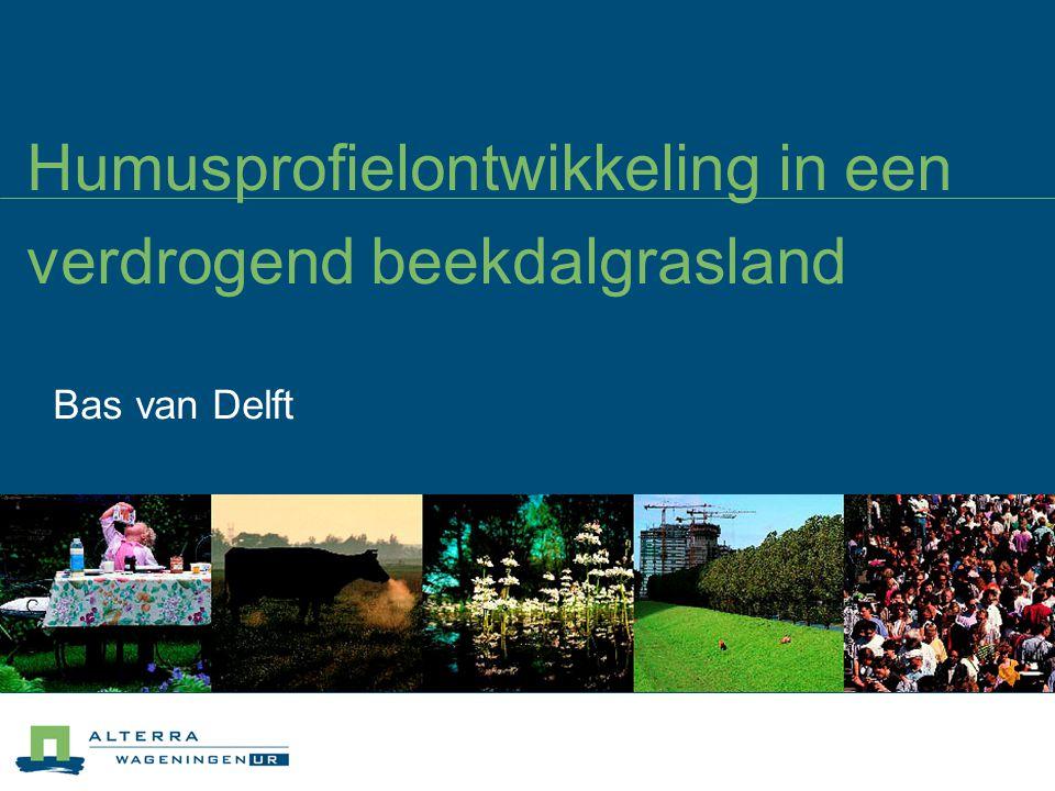 Humusprofielontwikkeling in een verdrogend beekdalgrasland Bas van Delft