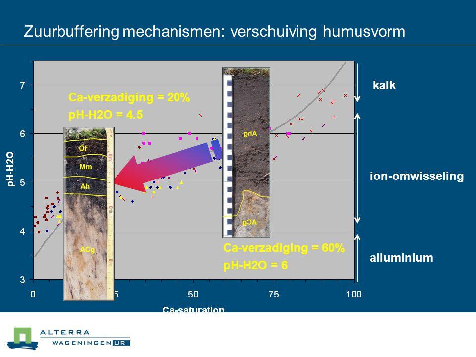 Zuurbuffering mechanismen: verschuiving humusvorm kalk ion-omwisseling alluminium Ca-verzadiging = 60% pH-H2O = 6 Ca-verzadiging = 20% pH-H2O = 4.5