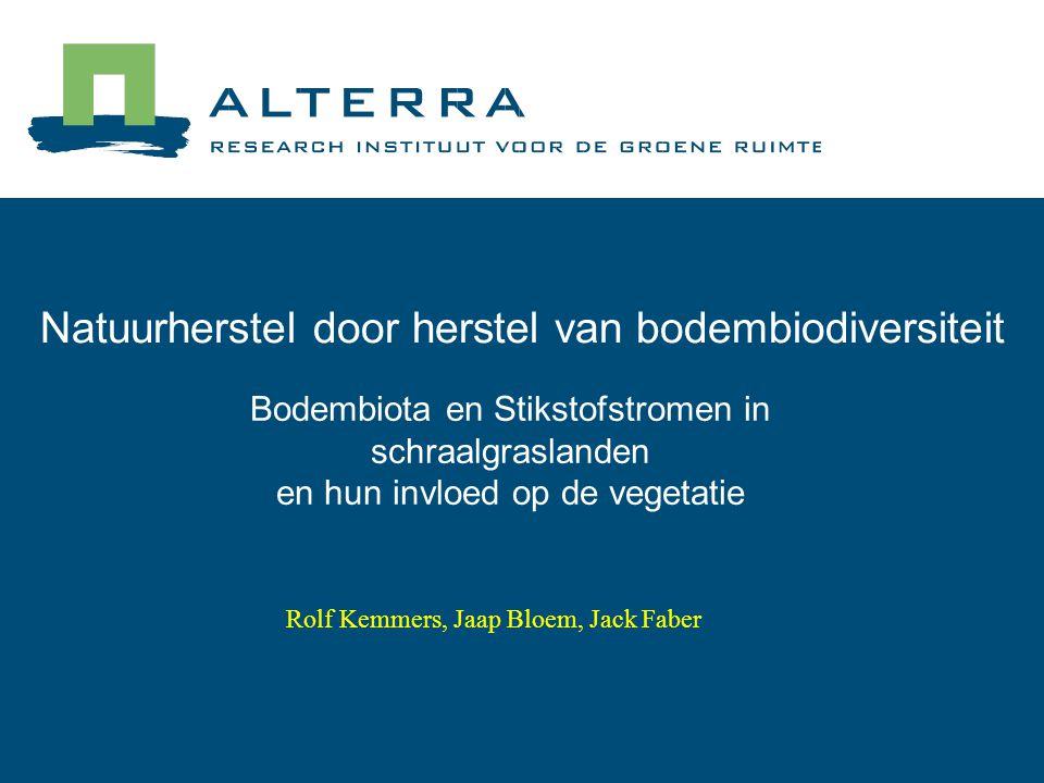 Bodembiota en Stikstofstromen in schraalgraslanden en hun invloed op de vegetatie Natuurherstel door herstel van bodembiodiversiteit Rolf Kemmers, Jaap Bloem, Jack Faber