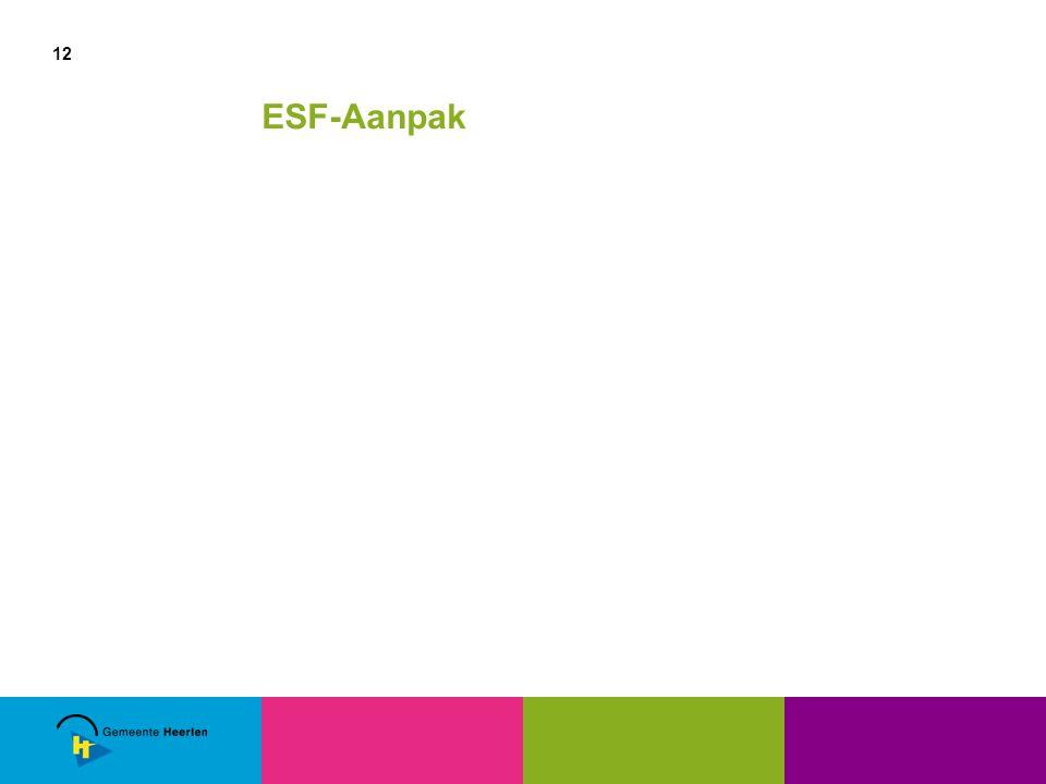 12 ESF-Aanpak