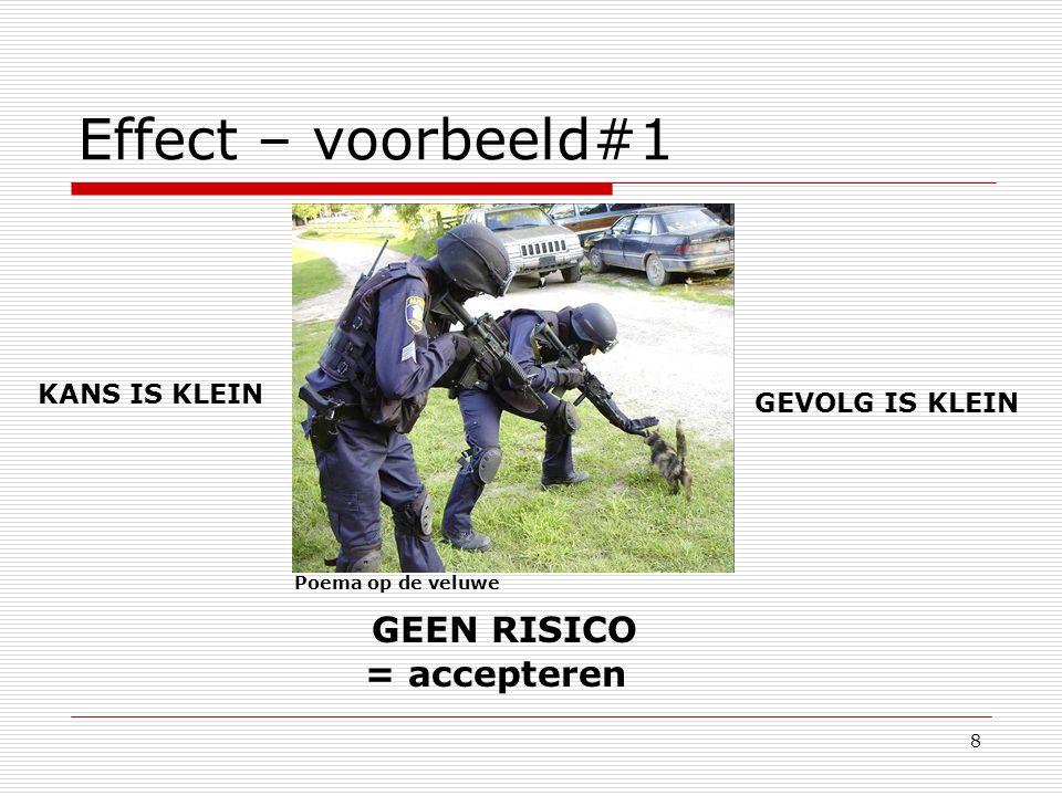 8 Effect – voorbeeld#1 Poema op de veluwe KANS IS KLEIN GEVOLG IS KLEIN GEEN RISICO = accepteren