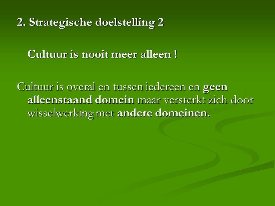 2. Strategische doelstelling 2 Cultuur is nooit meer alleen .