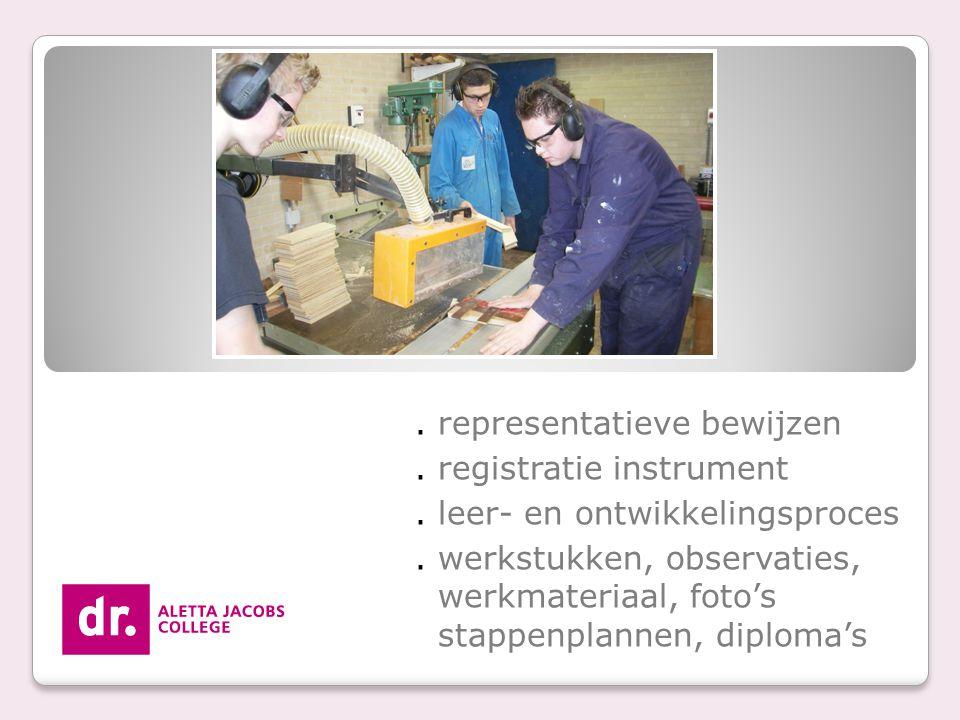 . representatieve bewijzen. registratie instrument. leer- en ontwikkelingsproces. werkstukken, observaties, werkmateriaal, foto's stappenplannen, dipl