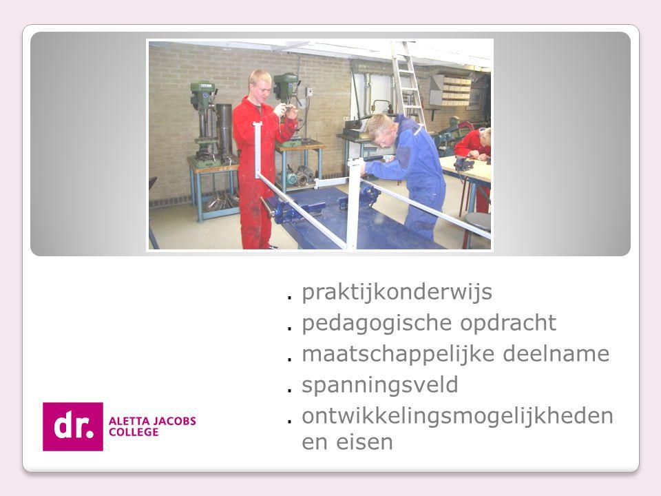 . praktijkonderwijs. pedagogische opdracht. maatschappelijke deelname. spanningsveld. ontwikkelingsmogelijkheden en eisen
