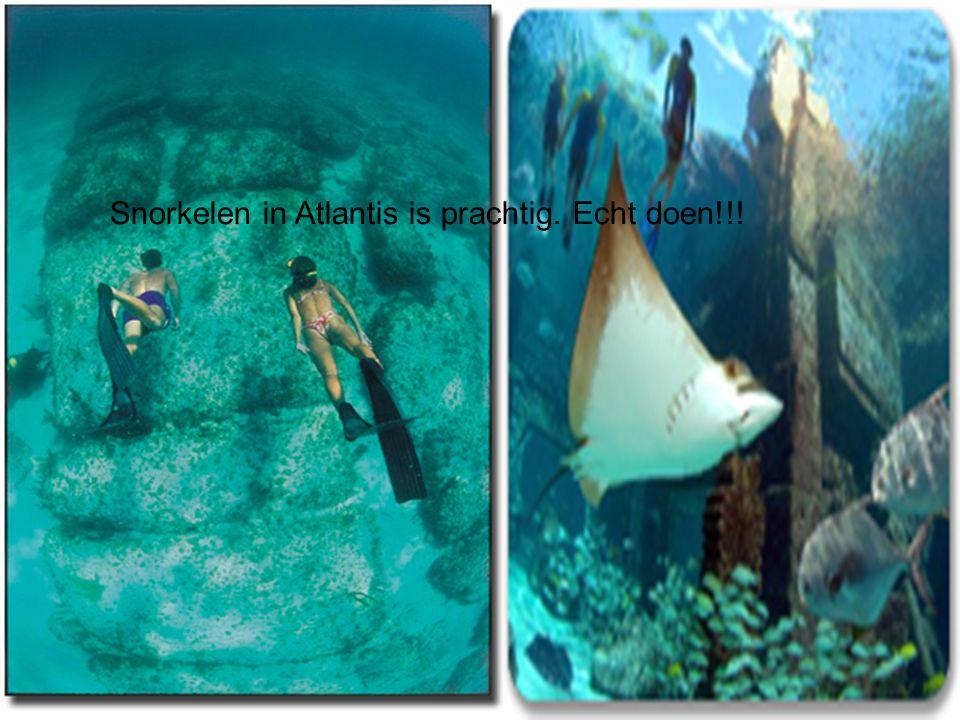 Snorkelen in Atlantis is prachtig. Echt doen!!!