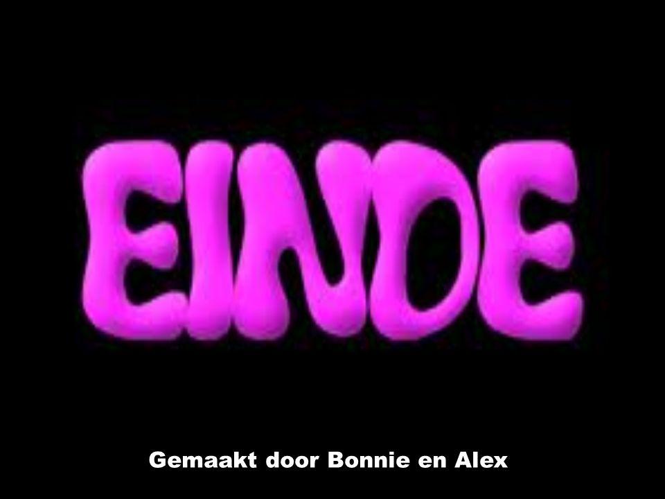 Gemaakt door Bonnie en Alex