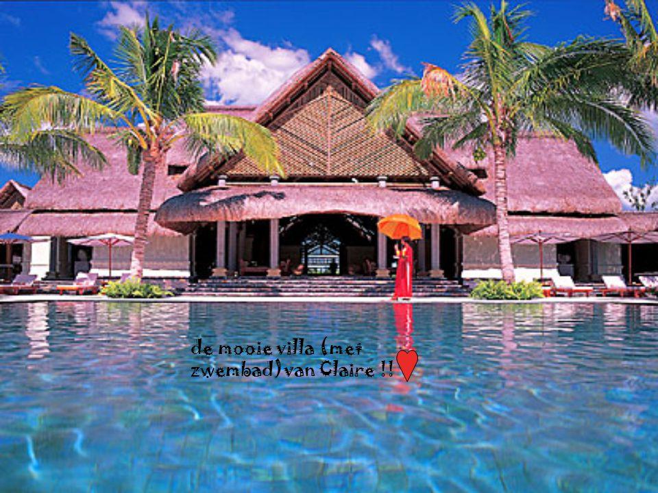 de mooie villa (met zwembad)van Claire !!