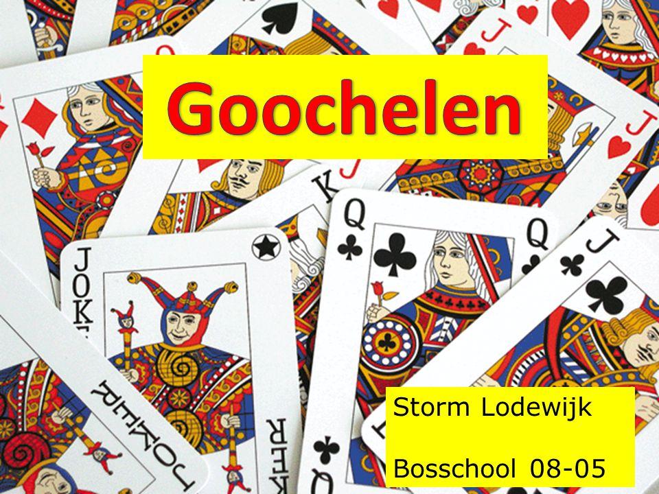 Storm Lodewijk Bosschool 08-05