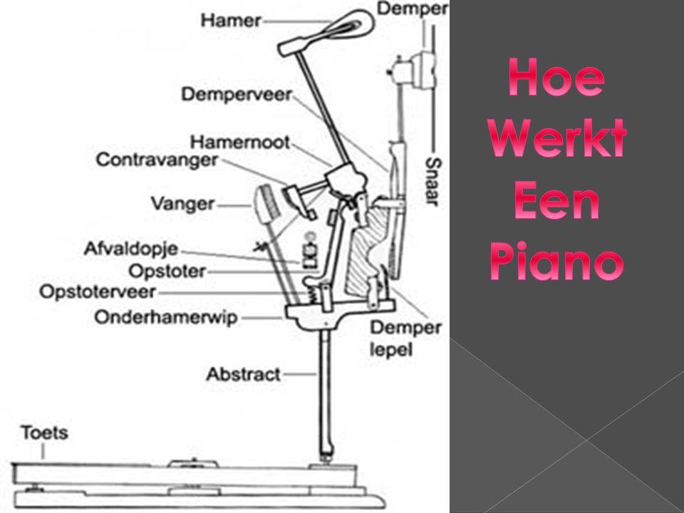  Yamaha  Steinway & Sons  Bechstein