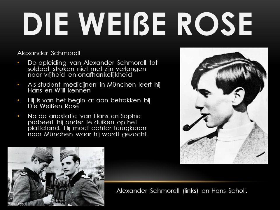 DIE WEIßE ROSE Alexander Schmorell De opleiding van Alexander Schmorell tot soldaat stroken niet met zijn verlangen naar vrijheid en onafhankelijkheid