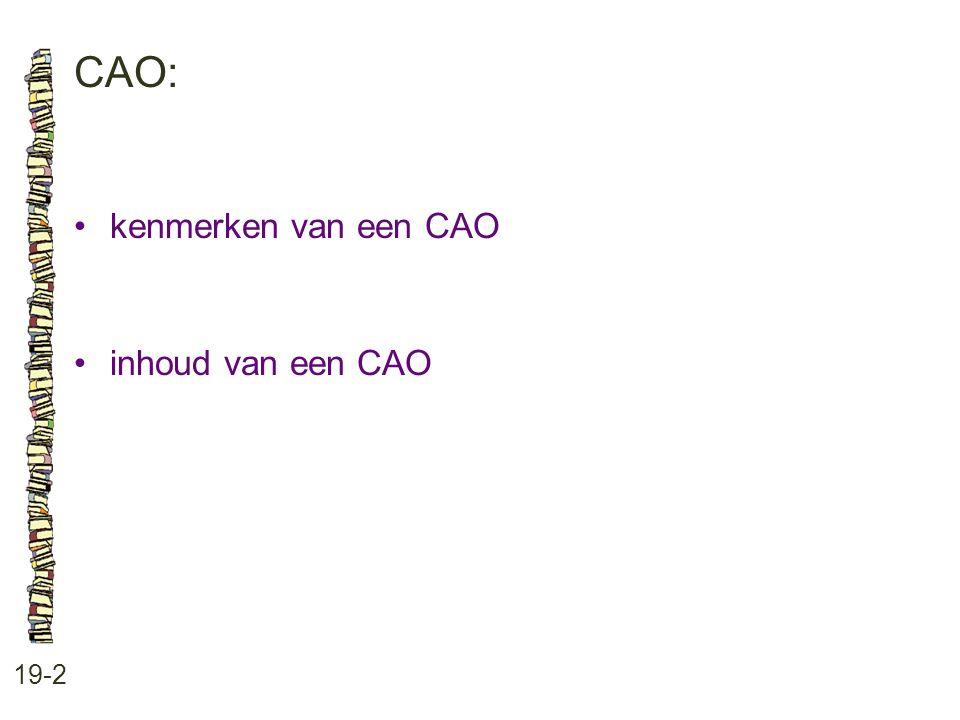 CAO: 19-2 kenmerken van een CAO inhoud van een CAO