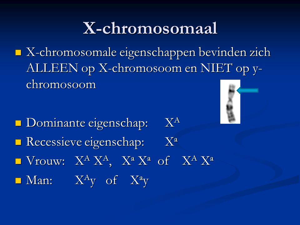 X-chromosomaal X-chromosomale eigenschappen bevinden zich ALLEEN op X-chromosoom en NIET op y- chromosoom X-chromosomale eigenschappen bevinden zich A