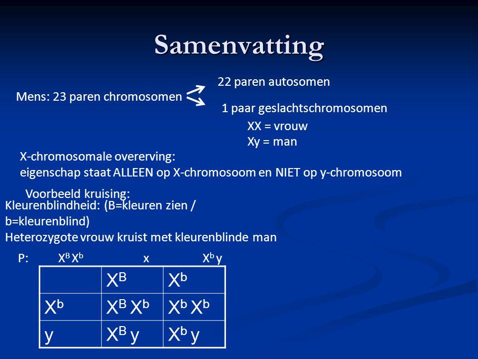Samenvatting Mens: 23 paren chromosomen 22 paren autosomen 1 paar geslachtschromosomen Xy = man XX = vrouw X-chromosomale overerving: eigenschap staat