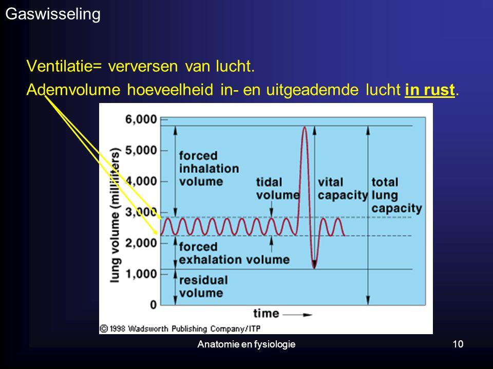 Anatomie en fysiologie10 Gaswisseling Ventilatie= verversen van lucht. Ademvolume hoeveelheid in- en uitgeademde lucht in rust.
