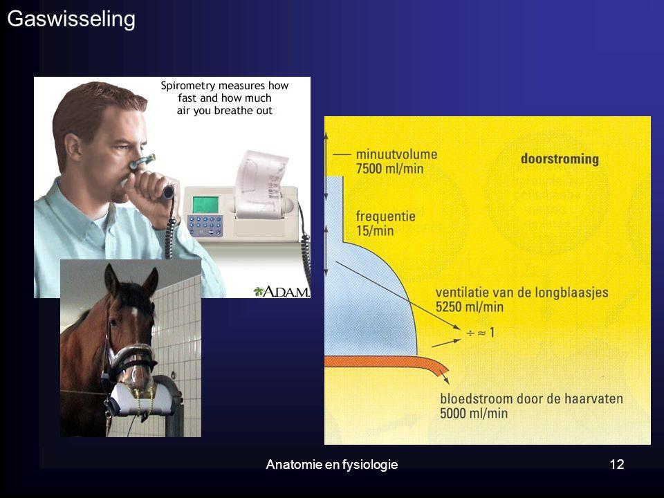 Anatomie en fysiologie12 Gaswisseling