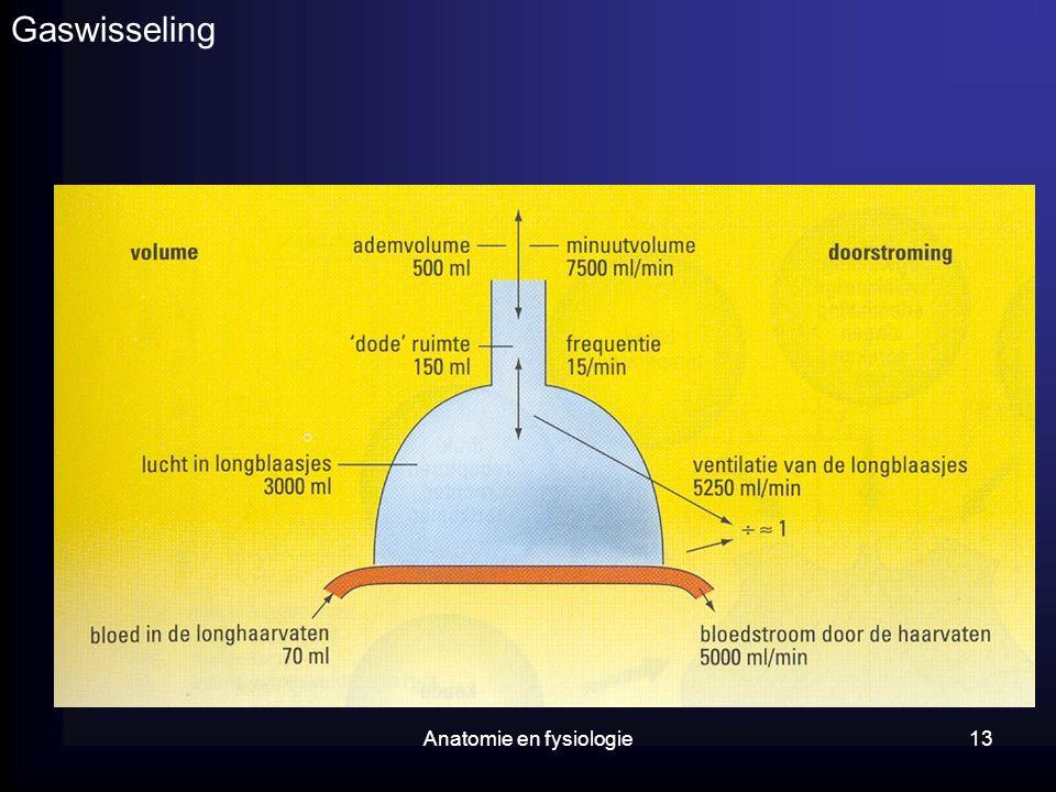 Anatomie en fysiologie13 Gaswisseling