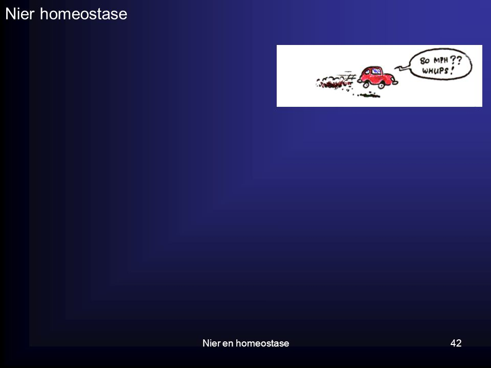 Nier en homeostase42 Nier homeostase