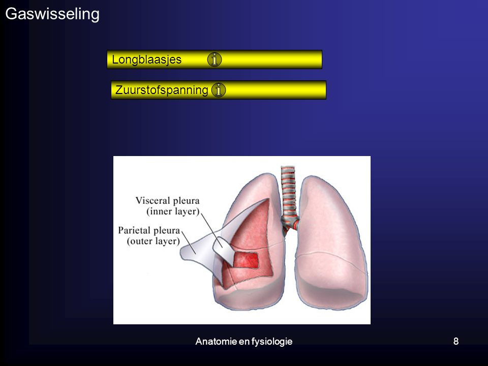 Anatomie en fysiologie8 Gaswisseling Zuurstofspanning Longblaasjes