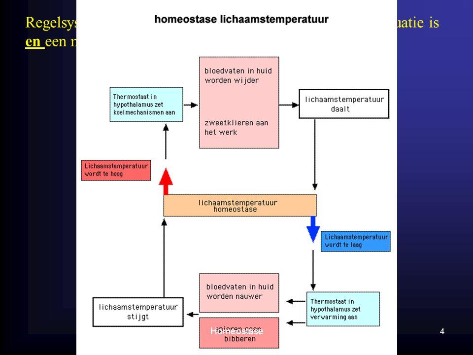 Regelsysteem heeft een sensor nodig, die nagaat hoe de situatie is en een manier om signalen te geven. 4 Homeostase