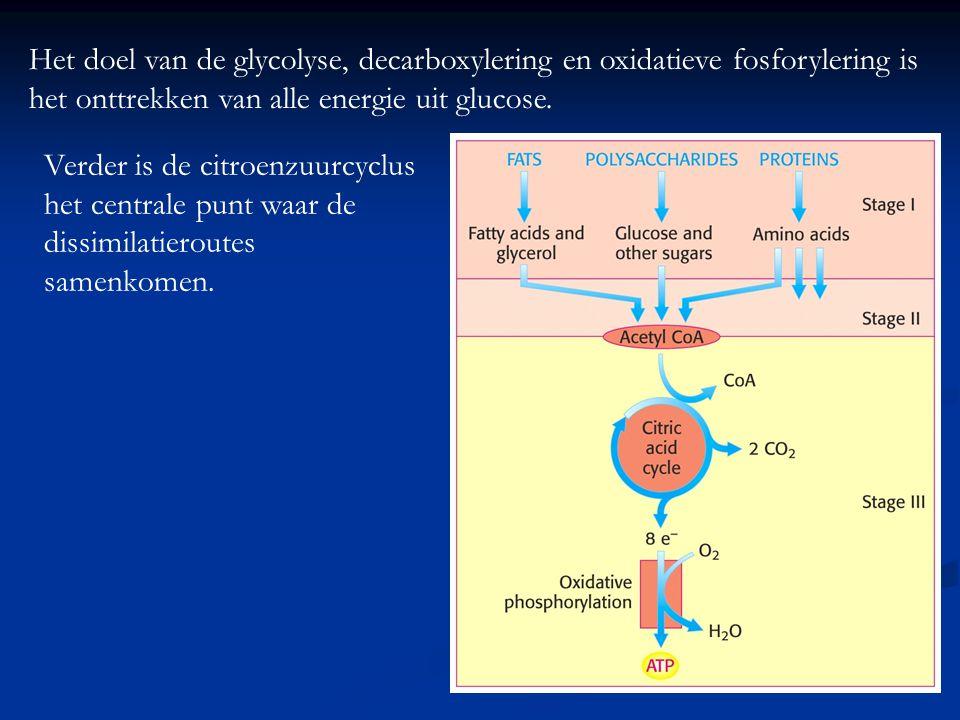 Het doel van de glycolyse, decarboxylering en oxidatieve fosforylering is het onttrekken van alle energie uit glucose. Verder is de citroenzuurcyclus