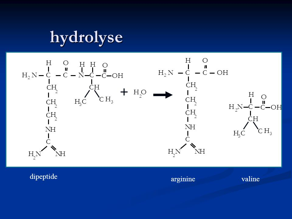 hydrolyse + argininevaline N H 2 CC HO C H 2 N H NH NH 2 OH C H 2 C H 2 C NH 2 C H CH CH 3 O C C H 3 N H 2 CC HO C H 2 N H NH NH 2 C H 2 C H 2 C N H C