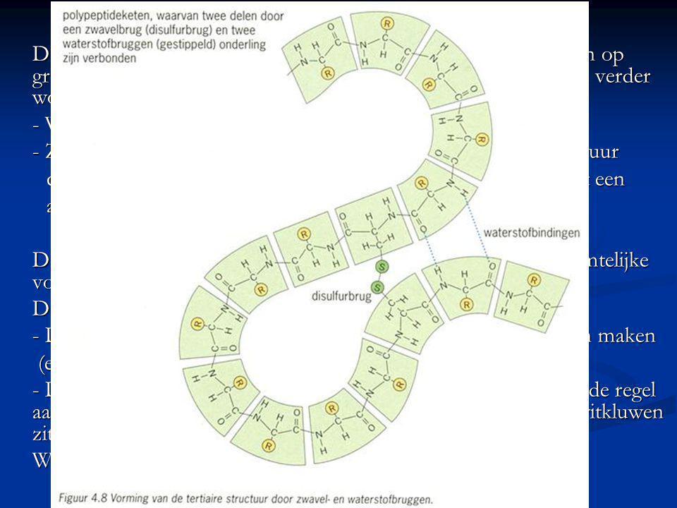 Tertiaire structuur De alfa-helix kan ook zorgen voor bindingen tussen aminozuren op groter afstanden waardoor de gedraaide en gespiraliseerde keten v