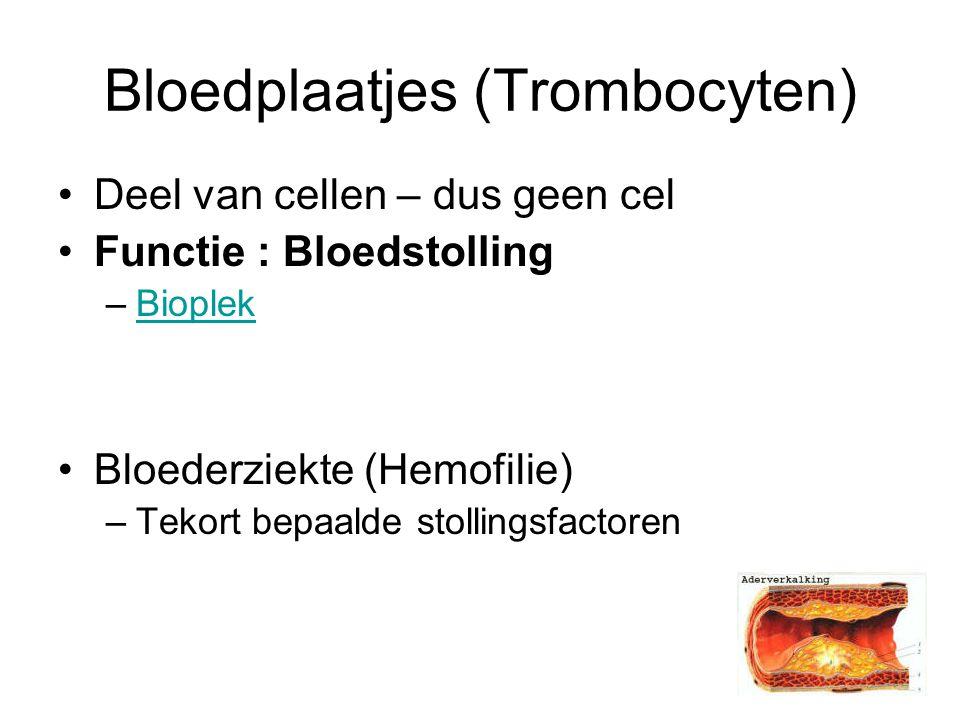 Bloedplaatjes (Trombocyten) Deel van cellen – dus geen cel Functie : Bloedstolling –BioplekBioplek Bloederziekte (Hemofilie) –Tekort bepaalde stollingsfactoren