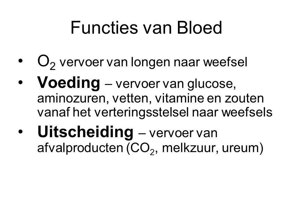 Functies van Bloed O 2 vervoer van longen naar weefsel Voeding – vervoer van glucose, aminozuren, vetten, vitamine en zouten vanaf het verteringsstelsel naar weefsels Uitscheiding – vervoer van afvalproducten (CO 2, melkzuur, ureum)