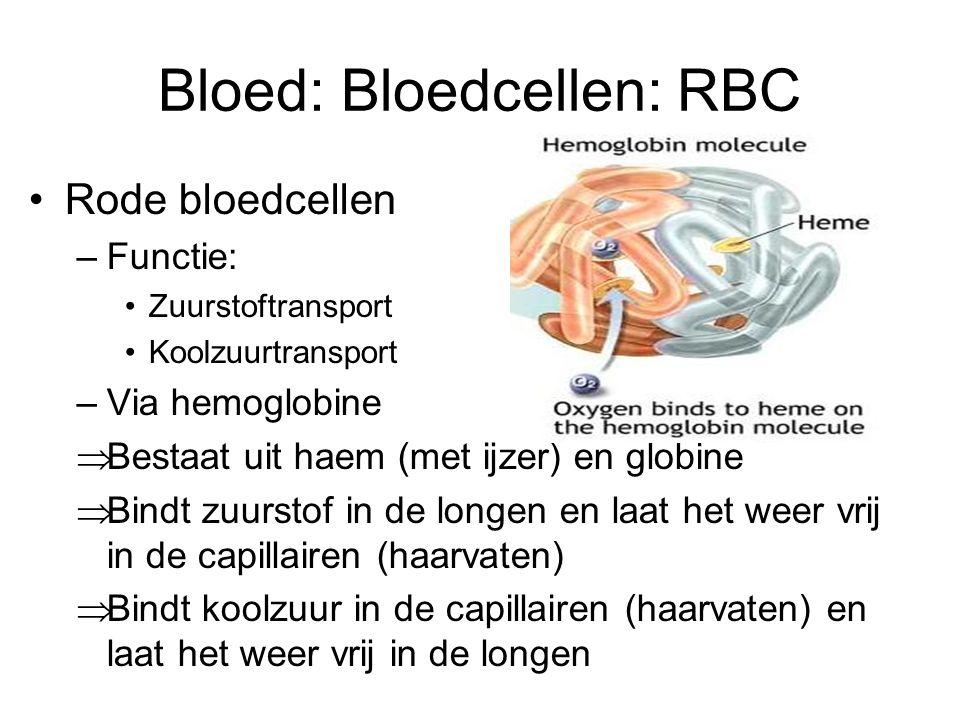 Bloed: Bloedcellen: RBC Rode bloedcellen –Functie: Zuurstoftransport Koolzuurtransport –Via hemoglobine  Bestaat uit haem (met ijzer) en globine  Bindt zuurstof in de longen en laat het weer vrij in de capillairen (haarvaten)  Bindt koolzuur in de capillairen (haarvaten) en laat het weer vrij in de longen