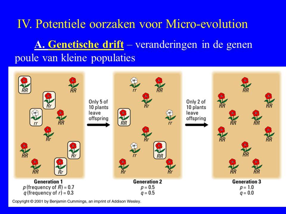 IV. Potentiele oorzaken voor Micro-evolution A. Genetische drift – veranderingen in de genen poule van kleine populaties