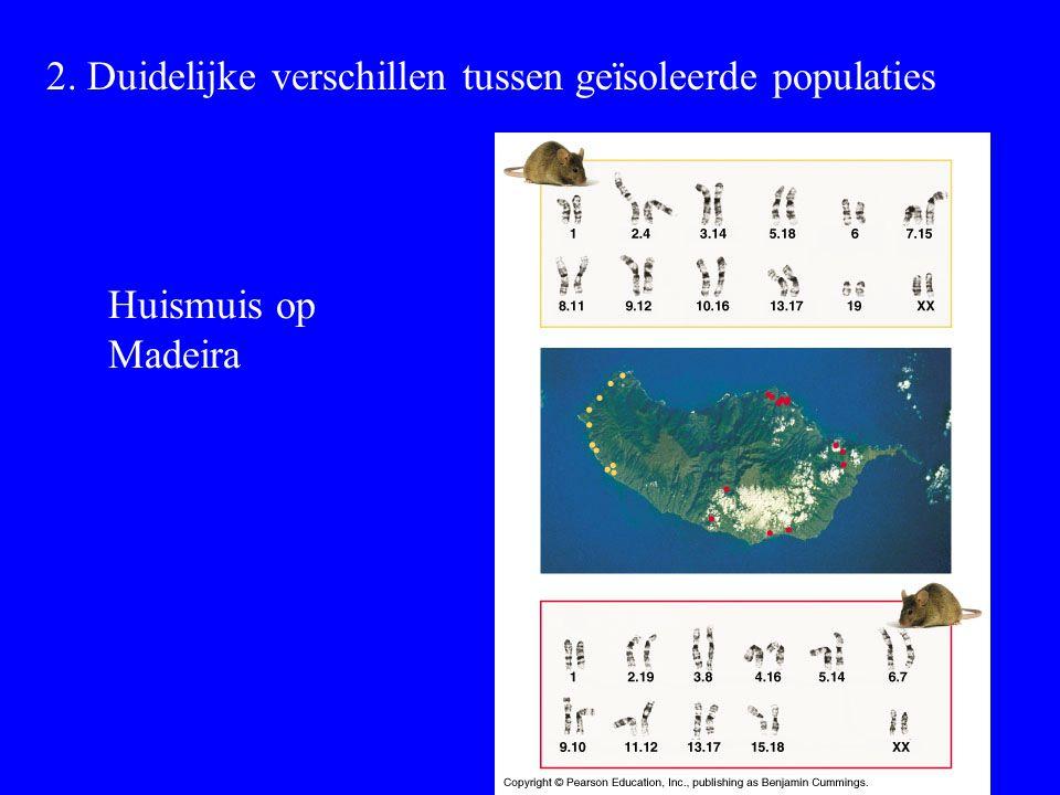 2. Duidelijke verschillen tussen geïsoleerde populaties Huismuis op Madeira