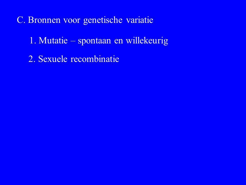 C. Bronnen voor genetische variatie 1. Mutatie – spontaan en willekeurig 2. Sexuele recombinatie
