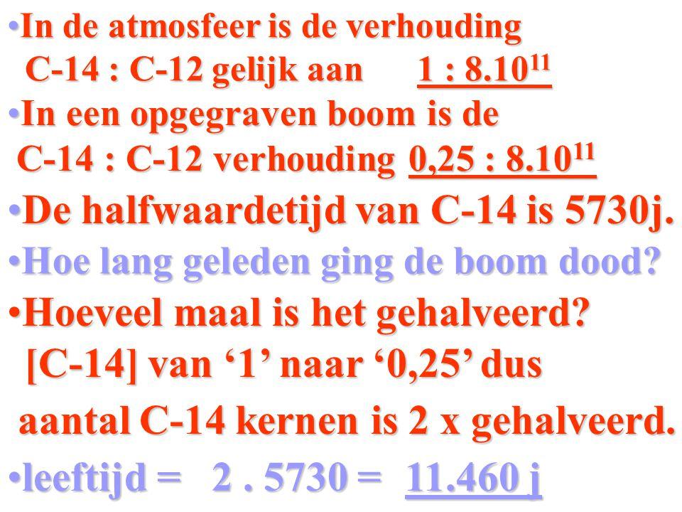 In de atmosfeer is de verhoudingIn de atmosfeer is de verhouding C-14 : C-12 gelijk aan 1 : 8.10 11 C-14 : C-12 gelijk aan 1 : 8.10 11 In een opgegraven boom is deIn een opgegraven boom is de C-14 : C-12 verhouding 0,25 : 8.10 11 C-14 : C-12 verhouding 0,25 : 8.10 11 De halfwaardetijd van C-14 is 5730j.De halfwaardetijd van C-14 is 5730j.