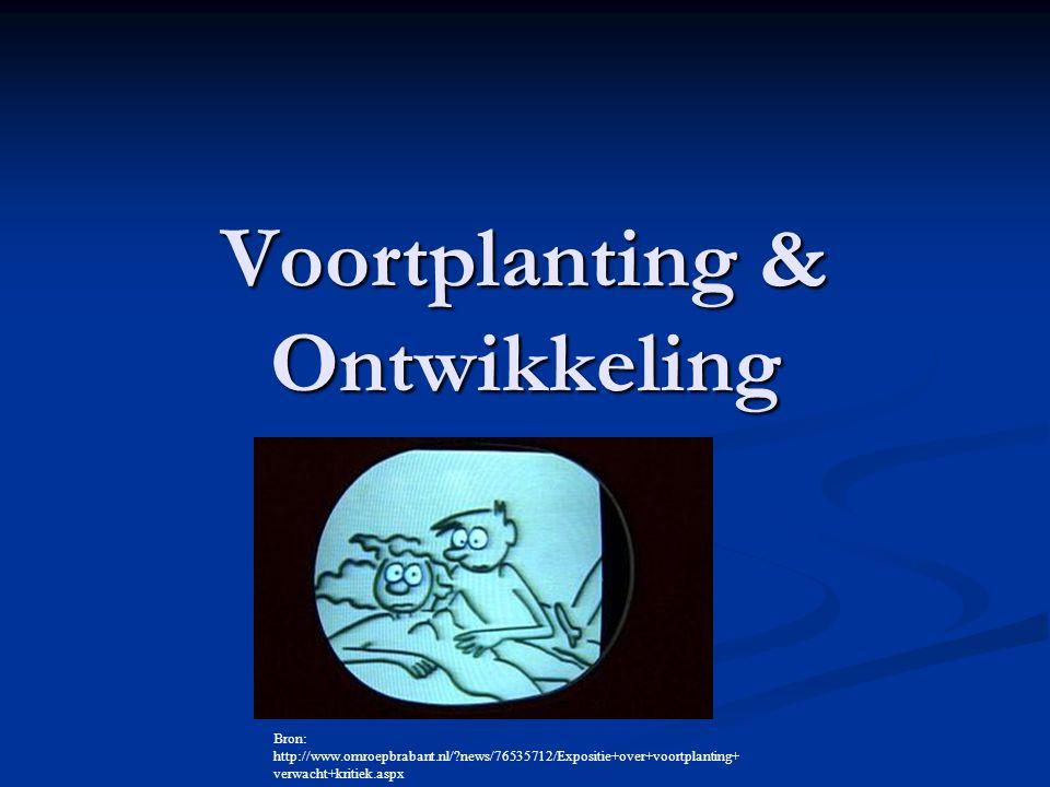 Voortplanting & Ontwikkeling Bron: http://www.omroepbrabant.nl/?news/76535712/Expositie+over+voortplanting+ verwacht+kritiek.aspx