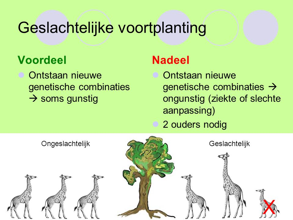 Natuurlijke selectie Charles Darwin (evolutietheorie) Demonstratie Nieuwe allelen-combinatie biedt voor en nadelen bij het overleven in een omgeving.