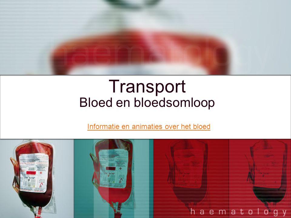 Transport Bloed en bloedsomloop Informatie en animaties over het bloed