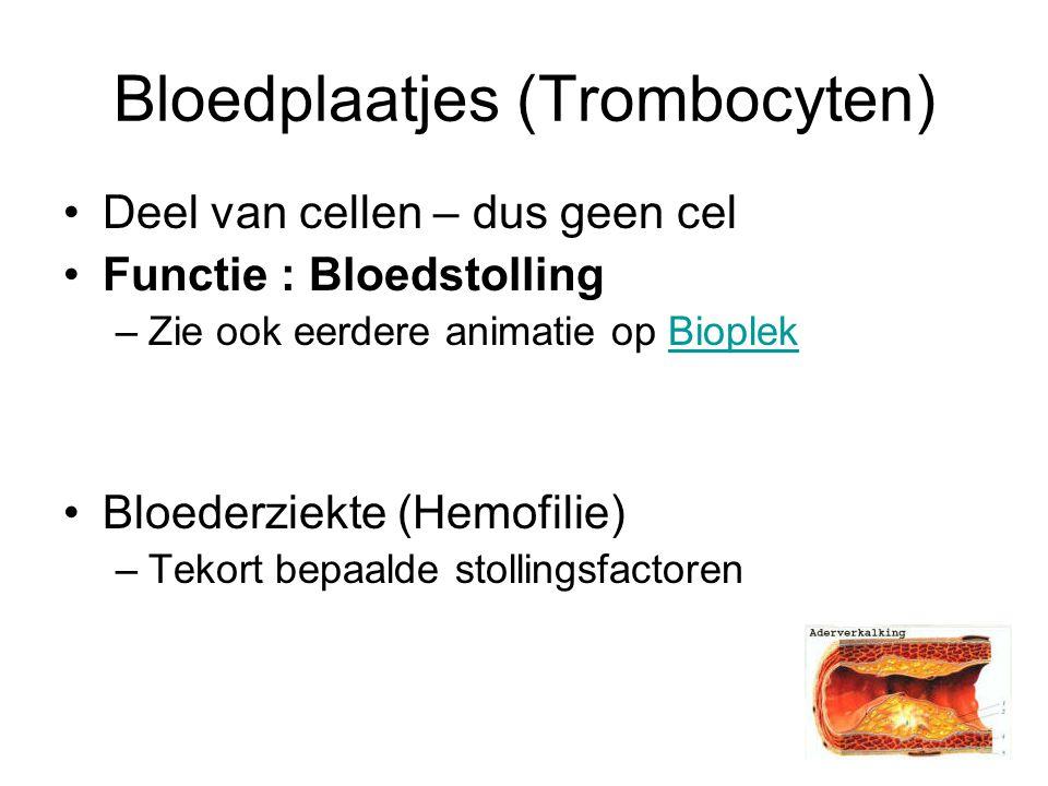 Bloedplaatjes (Trombocyten) Deel van cellen – dus geen cel Functie : Bloedstolling –Zie ook eerdere animatie op BioplekBioplek Bloederziekte (Hemofilie) –Tekort bepaalde stollingsfactoren