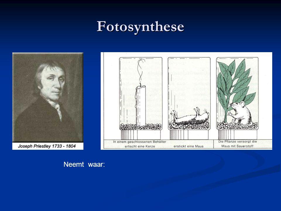 3 Fotosynthese Ingenhousz doet experimenten Conclusie : groene planten maken O 2