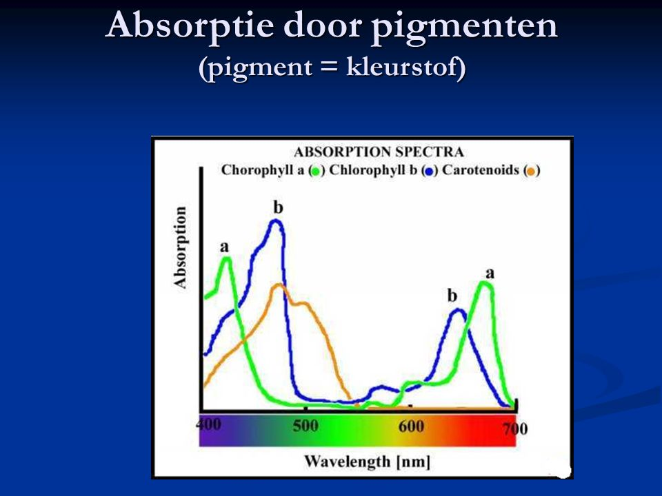 Absorptie door pigmenten (pigment = kleurstof)