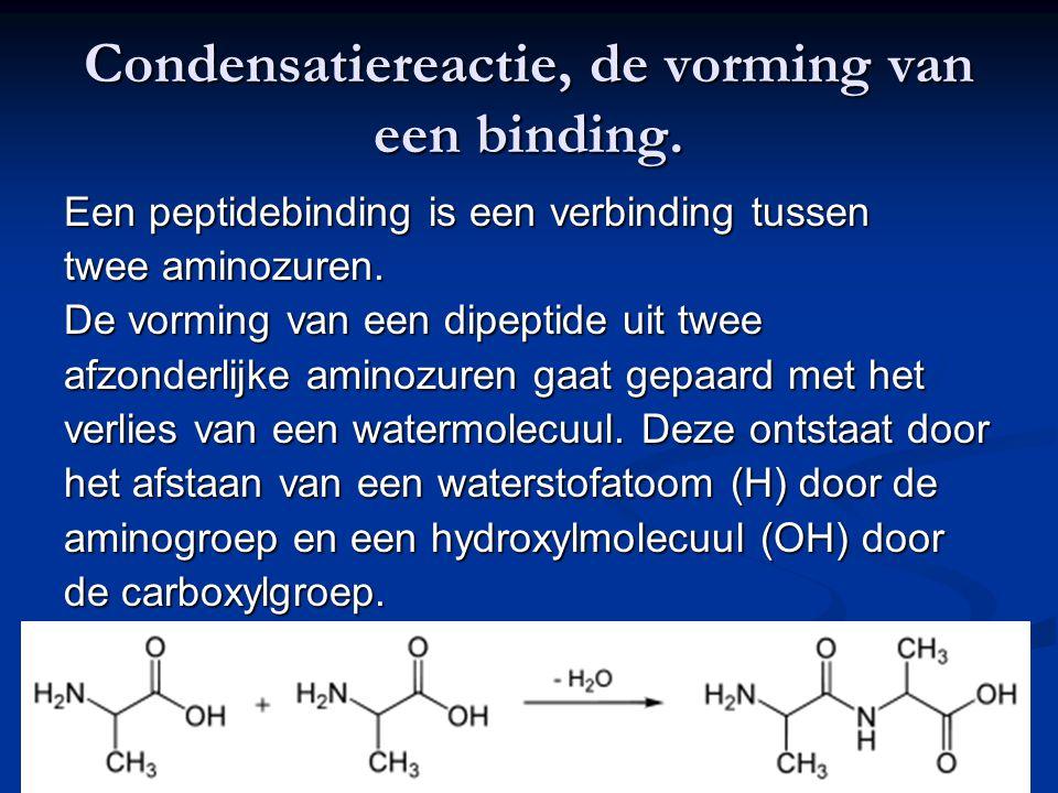 Condensatiereactie, de vorming van een binding. Een peptidebinding is een verbinding tussen twee aminozuren. De vorming van een dipeptide uit twee afz