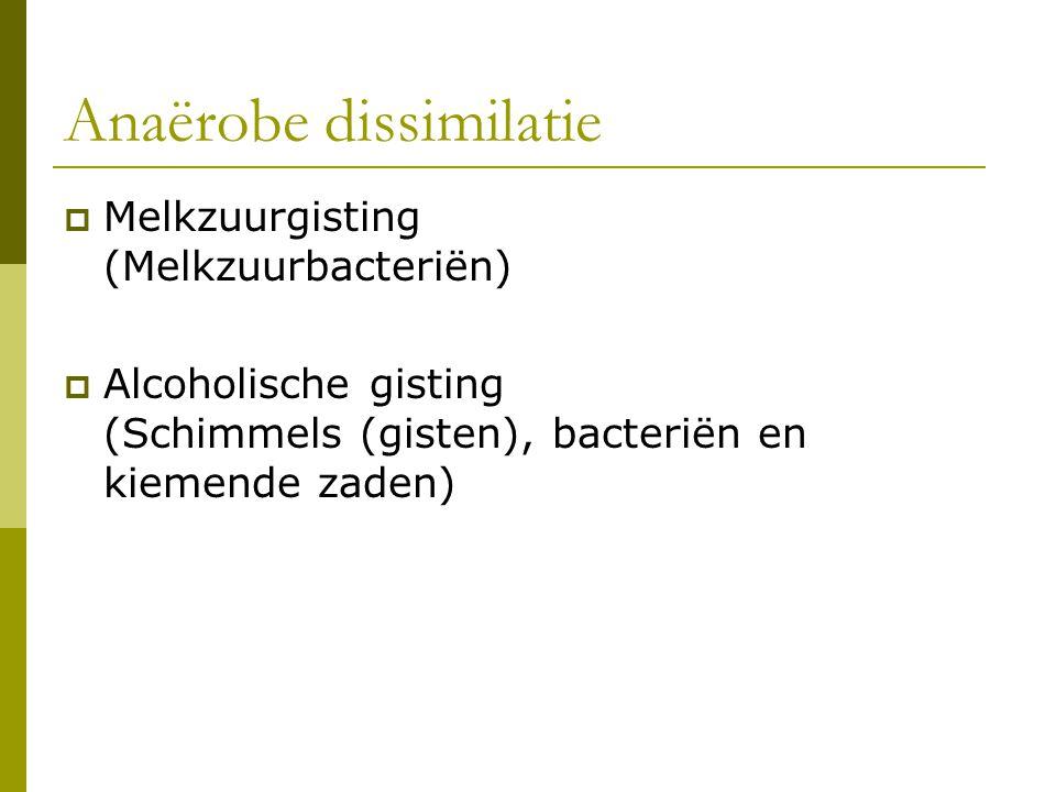Anaërobe dissimilatie  Melkzuurgisting (Melkzuurbacteriën)  Alcoholische gisting (Schimmels (gisten), bacteriën en kiemende zaden)