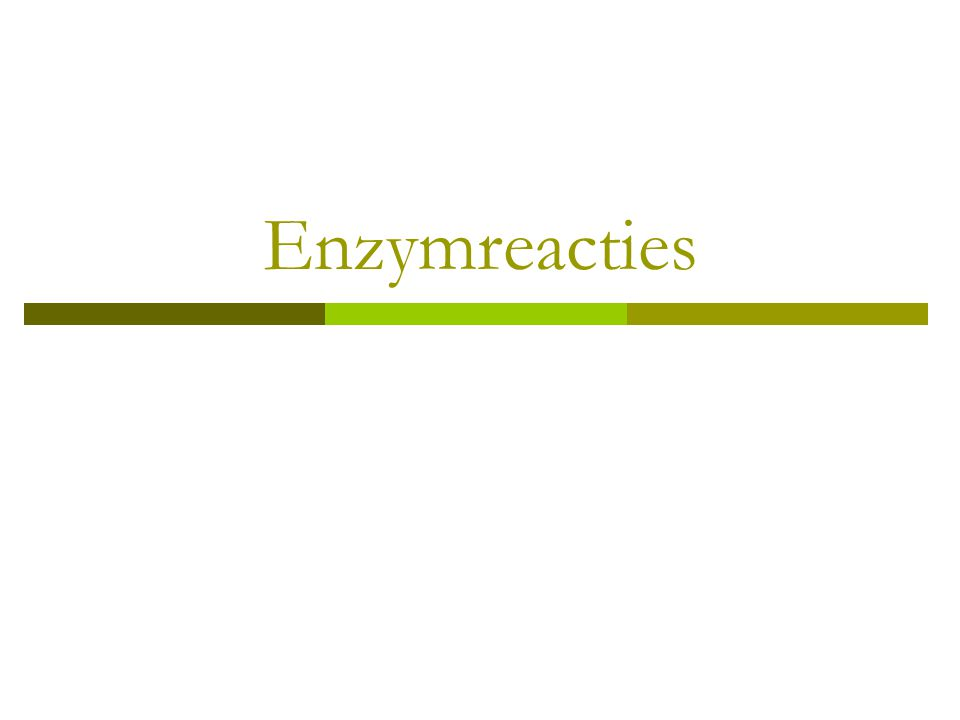 Enzymreacties