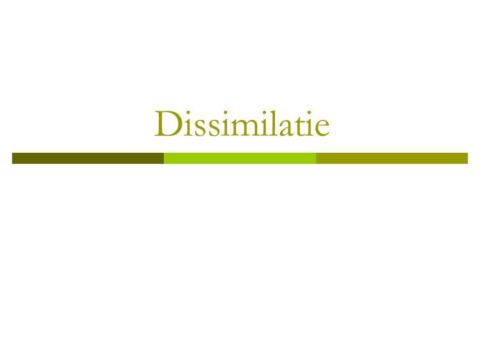 Dissimilatie