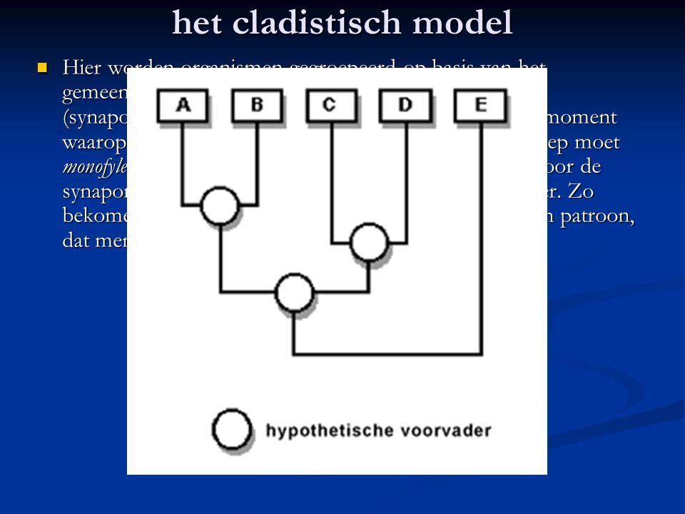 het cladistisch model Hier worden organismen gegroepeerd op basis van het gemeenschappelijk bezit van afgeleide kenmerken (synapomorfieën). Cladisten