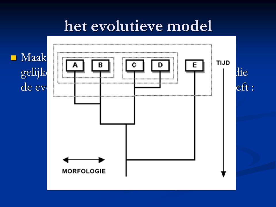 het evolutieve model Maakt gebruik van afstamming, zowel als gelijkenis, om een stamboom te construeren die de evolutie van de beschouwde groep weerge