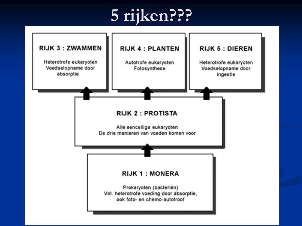 6 rijken of toch 3 domeinen.De archaea: prokaryoten met 16S rRNA (rRNA is ribosomaal-RNA).